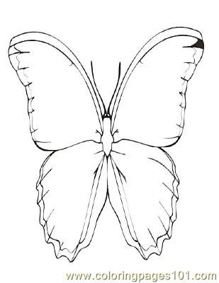 Butterflies034 Coloring Page