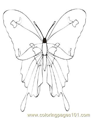 Butterflies036 Coloring Page