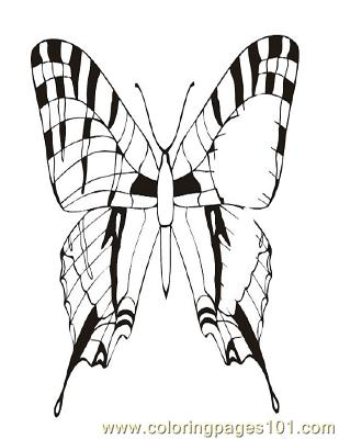 Butterflies051 Coloring Page