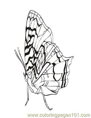 Butterflies058 Coloring Page