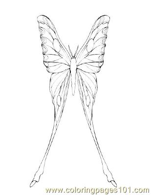 Butterflies069 Coloring Page