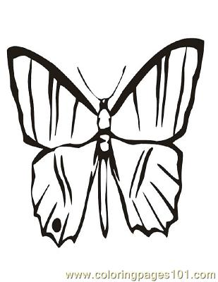 Butterflies073 Coloring Page