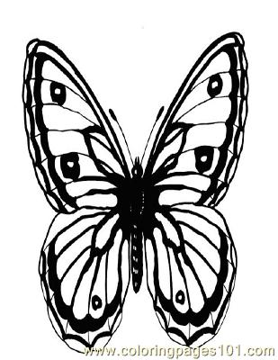 Butterflies084 Coloring Page