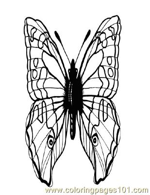 Butterflies092 Coloring Page