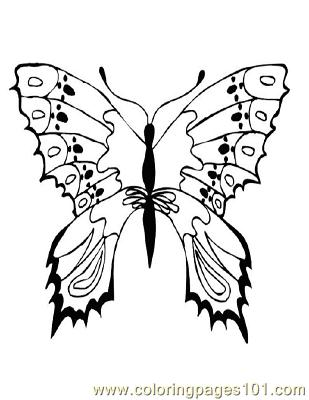 Butterflies093 Coloring Page