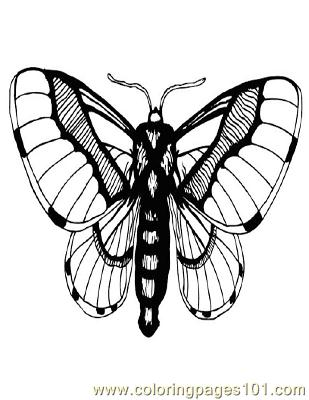 Butterflies094 Coloring Page