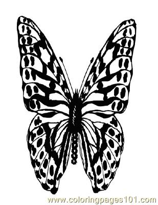 Butterflies096 Coloring Page