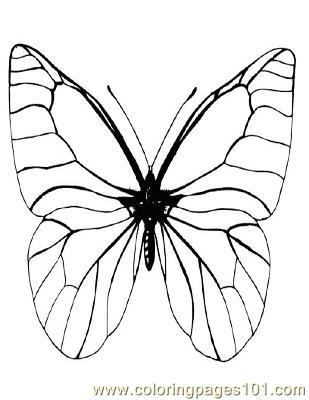 Butterflies098 Coloring Page