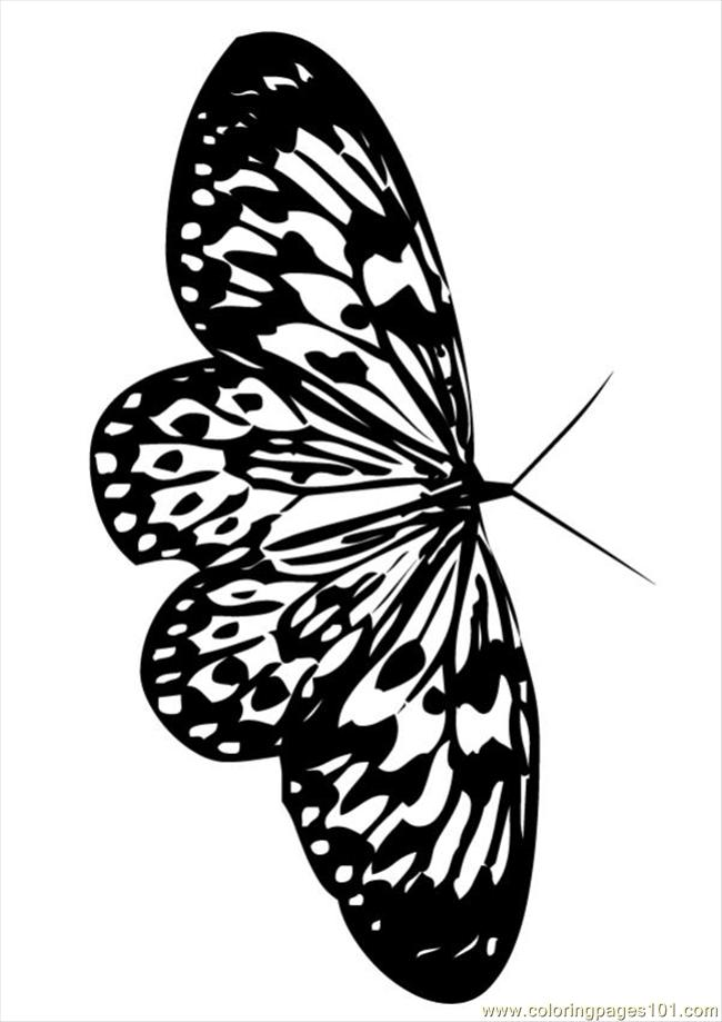 Butterfly 07 87004 Coloring Page