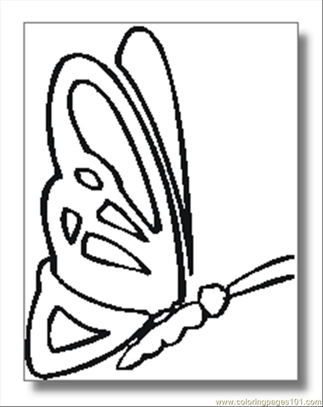 Butterfly Coloring Pages04