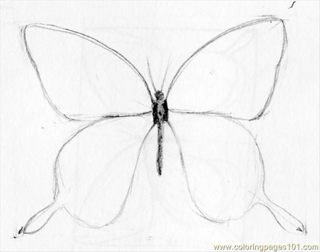 Butterfly Drawing 05 Coloring Page