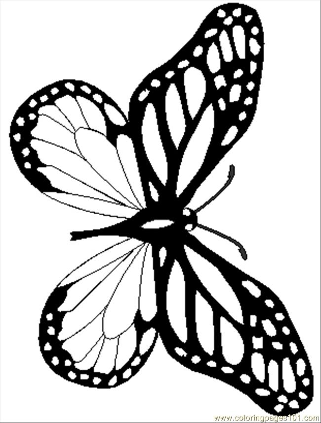 Monarchreal Coloring Page Free Butterfly Coloring Pages