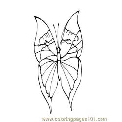 Butterflies026 Free Coloring Page for Kids