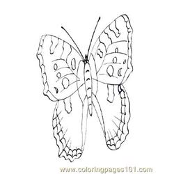 Butterflies027 coloring page