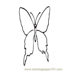 Butterflies029 coloring page