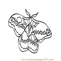 Butterflies030 coloring page