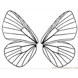 Butterfly Wings 5
