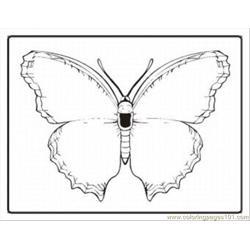 Tterfly Coloring Pages 14 Med