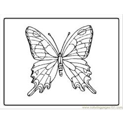 Tterfly Coloring Pages 21 Med