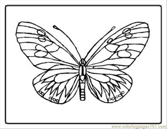 Tterfly Coloring Pages 17 Med Coloring Page