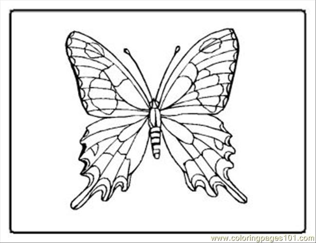 Tterfly Coloring Pages 21 Med Coloring Page
