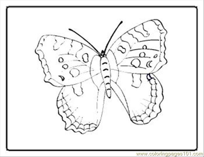 Tterfly Coloring Pages 26 Med Coloring Page