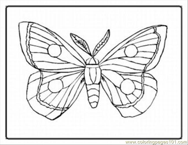 Tterfly Coloring Pages 29 Med Coloring Page