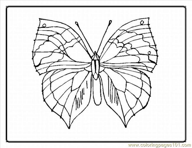 Tterfly Coloring Pages 93 Lrg Coloring Page