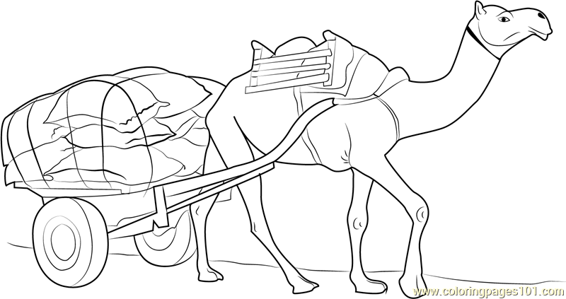 Working Camel Coloring Page For Kids Free Camel Printable Coloring Pages Online For Kids Coloringpages101 Com Coloring Pages For Kids