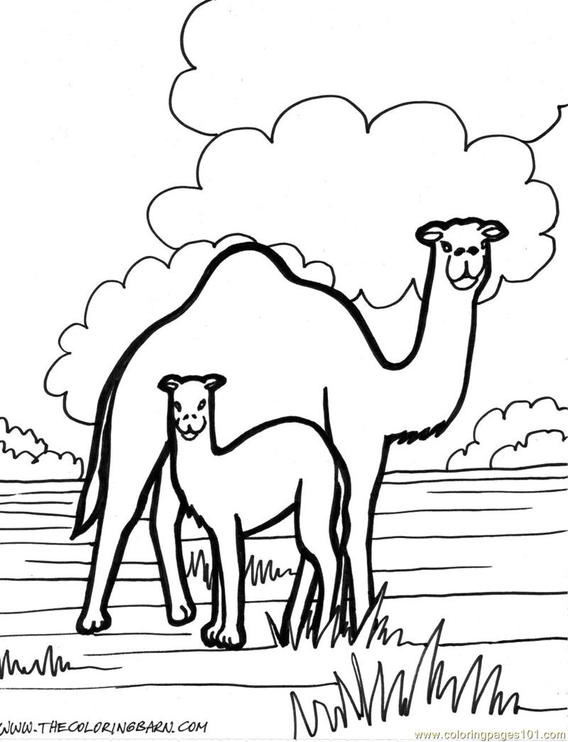 Two Camel Coloring Page For Kids Free Camel Printable Coloring Pages Online For Kids Coloringpages101 Com Coloring Pages For Kids