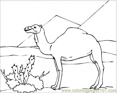 Camel In Desert Coloring Page - Free Camel Coloring Pages ...