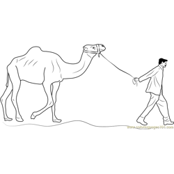 Man Leading Camel Free Coloring Page for Kids