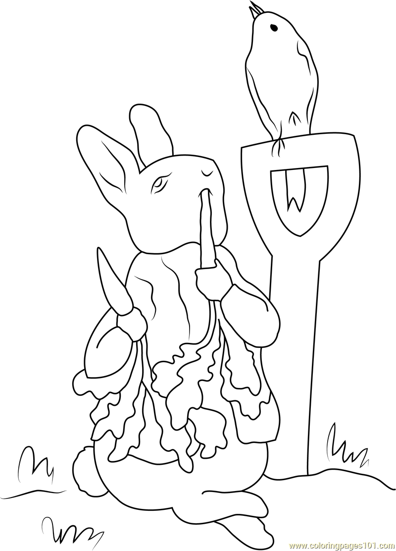simple line drawing peter rabbit multi purpose use 30 peter