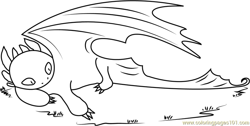 Toothless Dragon Sleeping Coloring Page