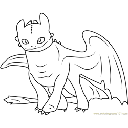 Toothless Free Coloring Page for Kids