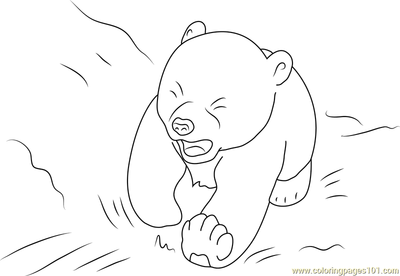Little Polar Bear Lars Crying Coloring Page Free The