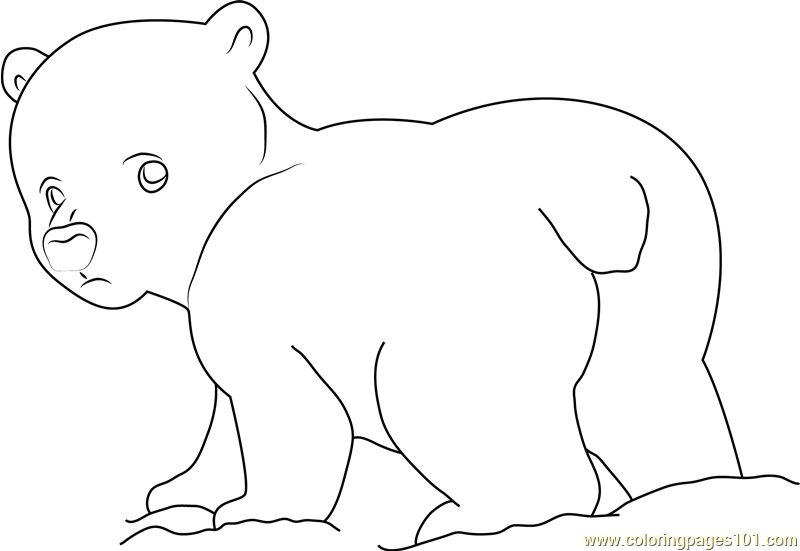 Little Polar Bear Looking Back Coloring Page