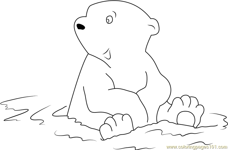 Little Polar Bear Sitting in Water Coloring Page Free The Little