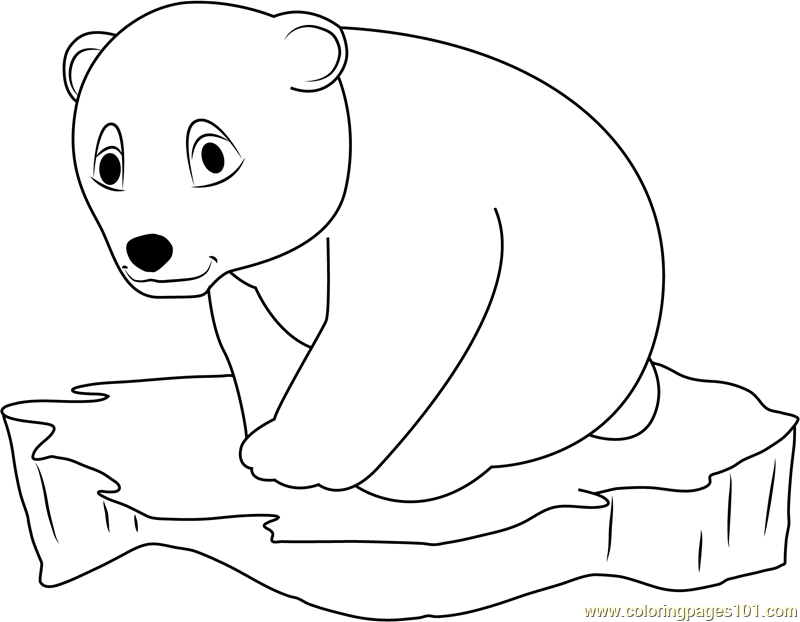 Little Polar Bear On Ice Surface Coloring Page Free The