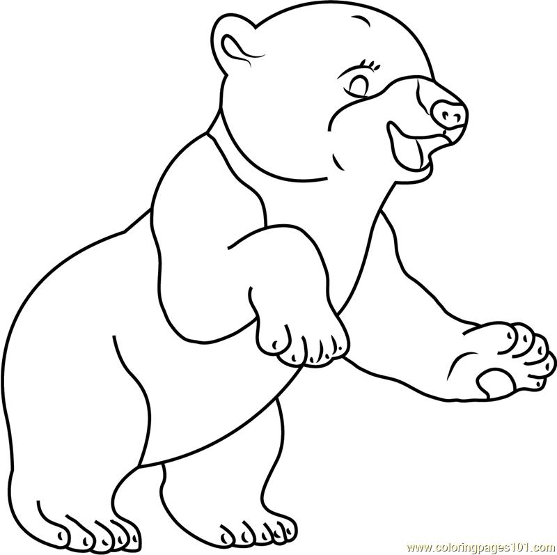Smiling Polar Bear Coloring Page Free The Little Polar Bear