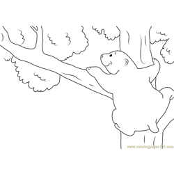 Bear on Tree Free Coloring Page for Kids