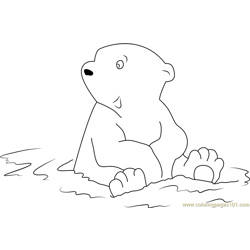 Little Polar Bear Sitting in Water Free Coloring Page for Kids