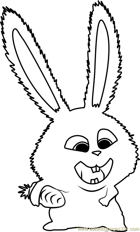 Snowball Coloring Page Free The Secret Life Of Pets Coloring Pages Coloringpages101 Com