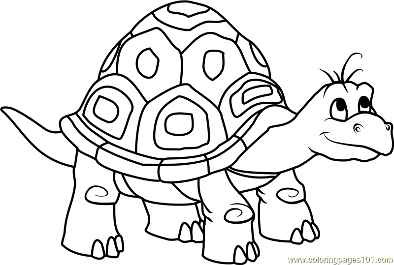 Dragon Tales Speedy The Turtle Coloring Page Free Dragon
