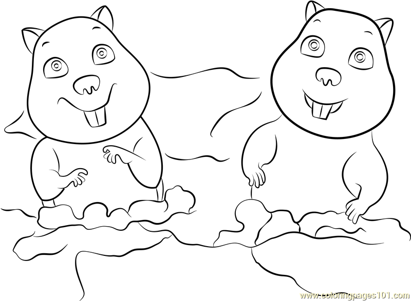 Gophers Coloring Page