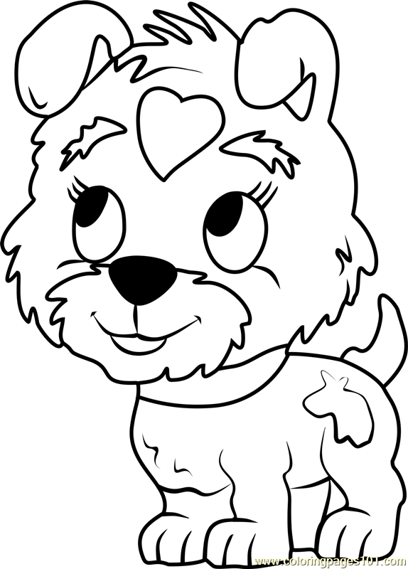 Pound Puppies Buttercup Coloring Page Free Pound Puppies