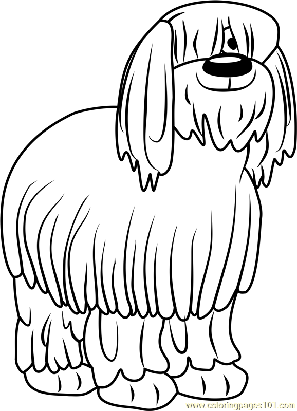 Pound puppies niblet the old english sheepdog coloring for Pound puppies coloring pages