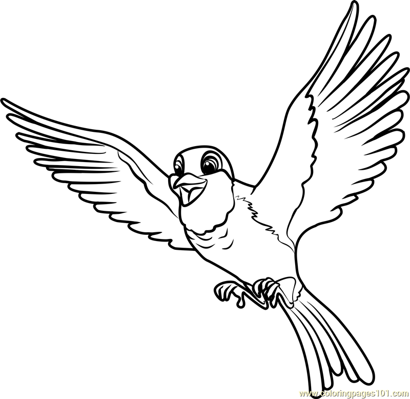 Fresh Bird Coloring Page 19