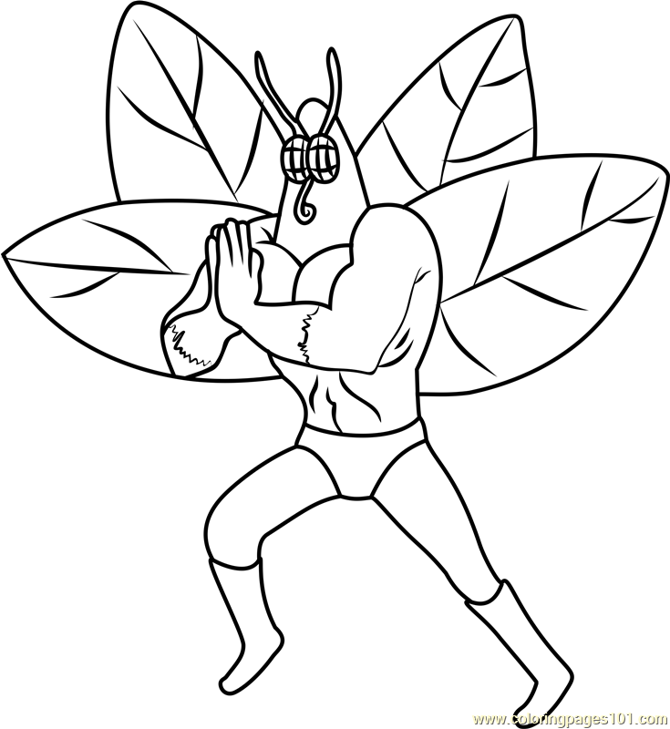 the moth coloring page