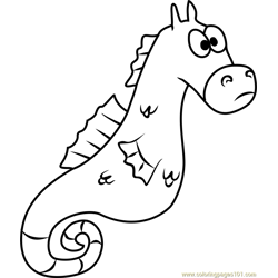 Mystery the Seahorse